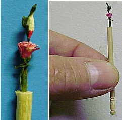 hand carved hummingbird and flower toothpick